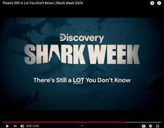 """Discovery Teases """"Shark Week"""" With Hilarious """"Austin Powers"""" Like Promo"""