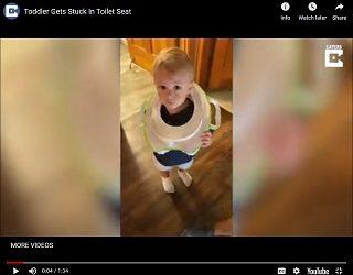 Trending: Toddler Gets Stuck In Toilet Seat