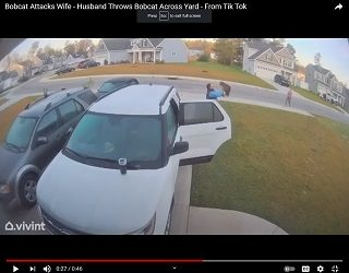 Man Named Happy Throws Bobcat After It Attacks Wife In Wild Video
